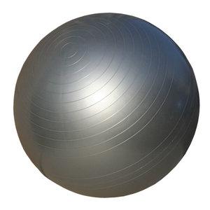 Gymboll, Anti-Burst, 65 cm, Silver