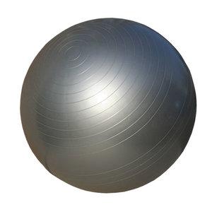 Gymboll, Anti-Burst, 55 cm, Silver