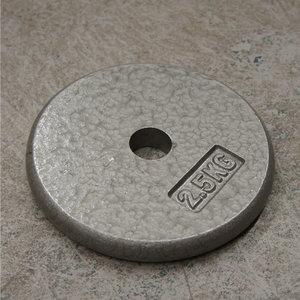Skolvikt WH Järn 2,5 kg